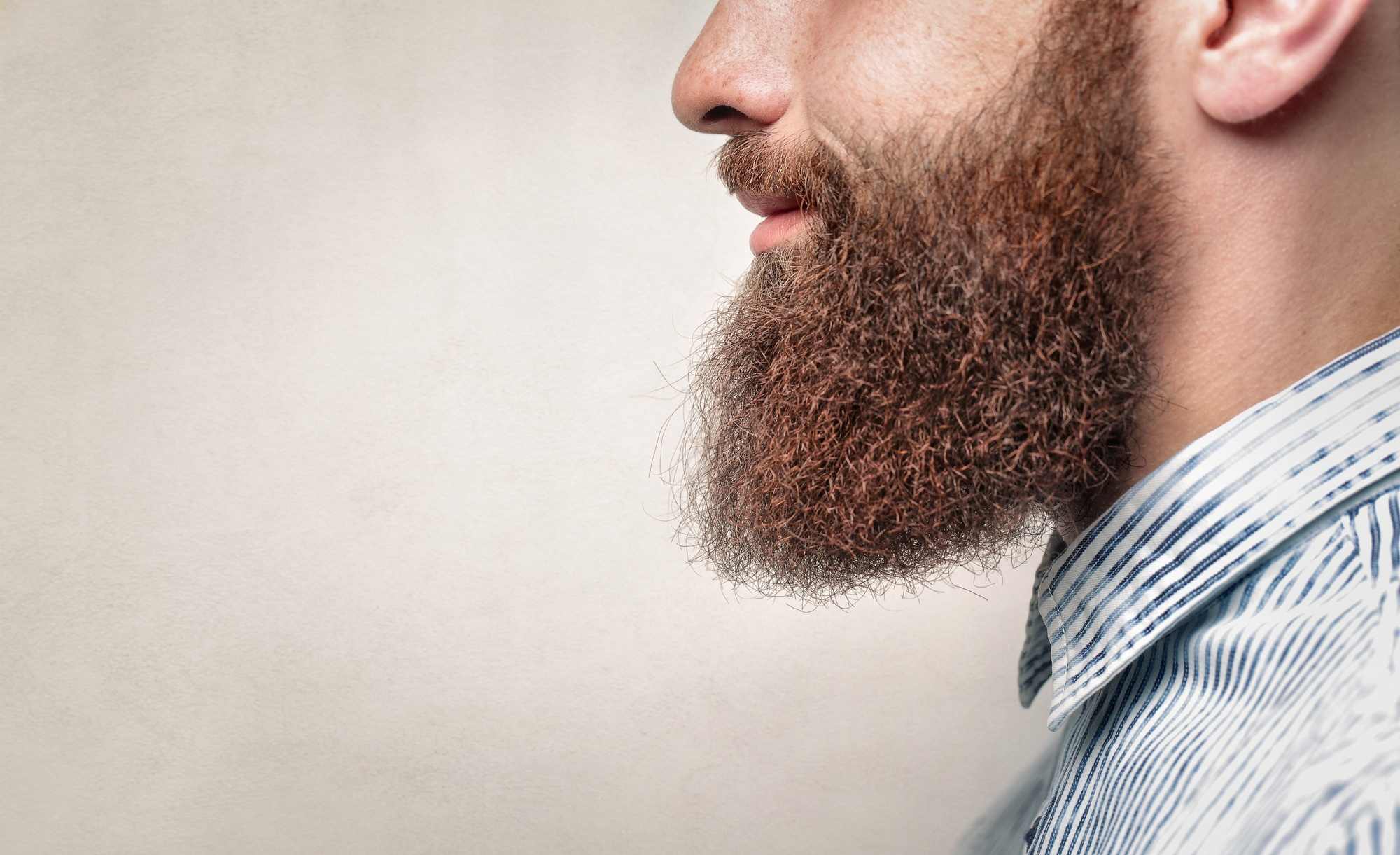 how often should you wash your beard
